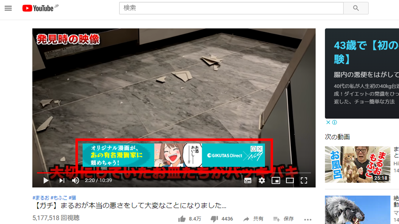 YouTube 動画内バナー広告